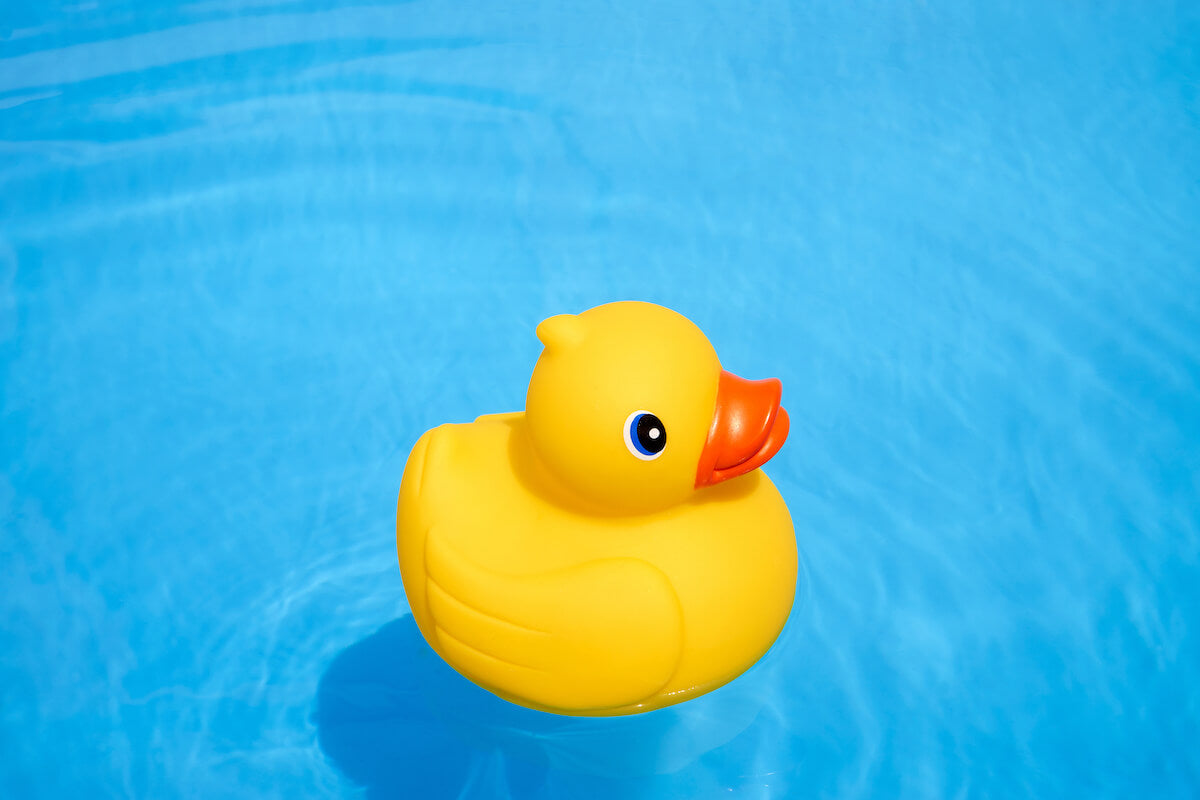 Yellow rubber duck floating in water