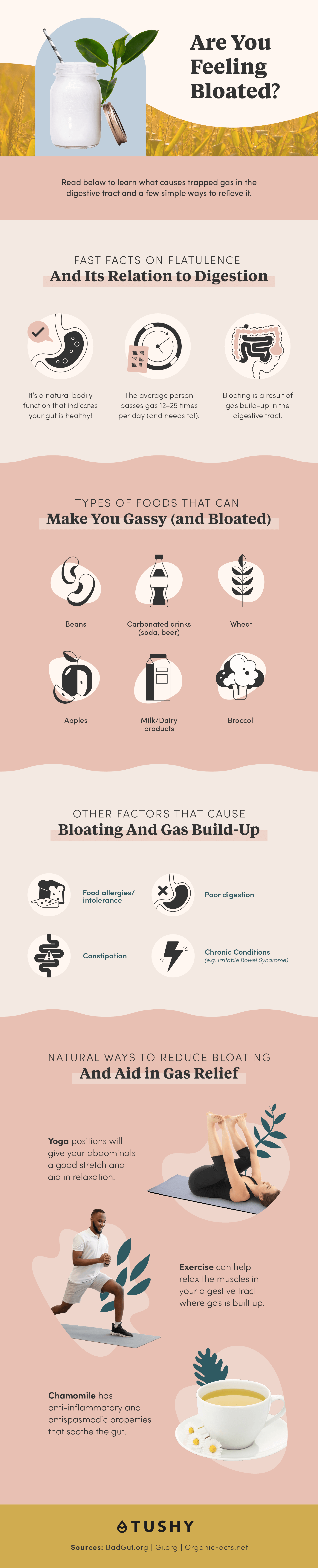 What Causes Farting & What Can Help to Relieve Gas