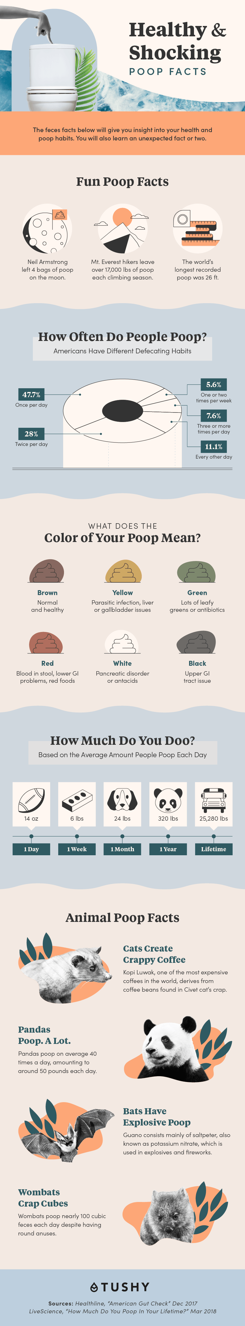 Healthy and shocking poop facts infographic