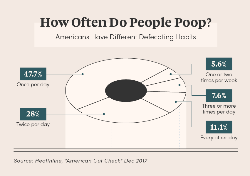 Graphic chart displaying how often people poop
