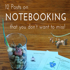 12 Posts on Notebooking that you don't want to miss