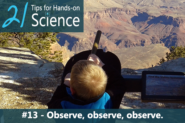 21 Tips for Hands-on Science {Elemental Science} - Tip #13. Observe, observe, observe.