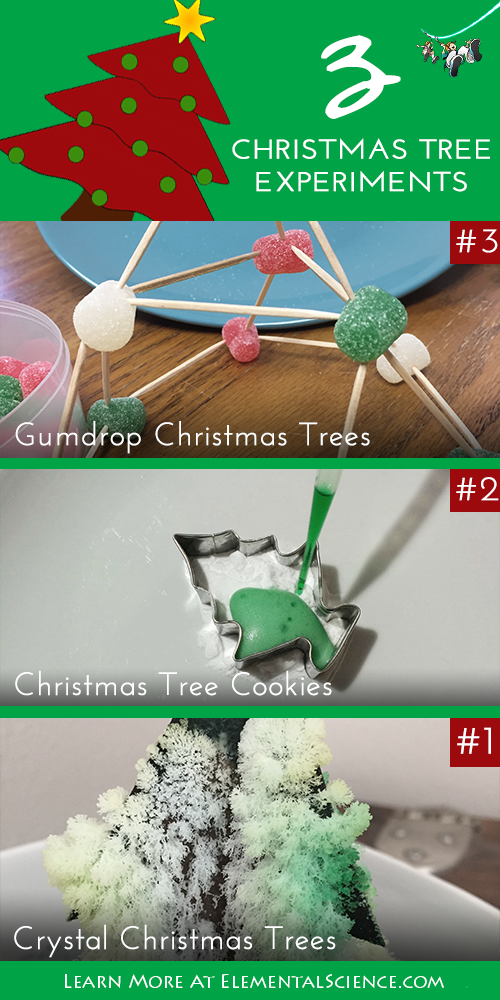 Don't be afraid to try these 3 Christmas tree experiments right now