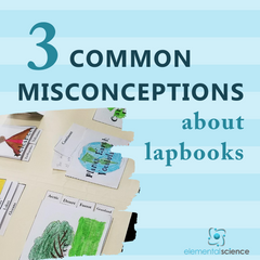 Have you run across one of these misconceptions? Learn the truth about lapbooks and how you can use them in your homeschool. | Elemental Science
