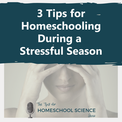 How do you keep homeschooling during a stressful season? These three tips will help.