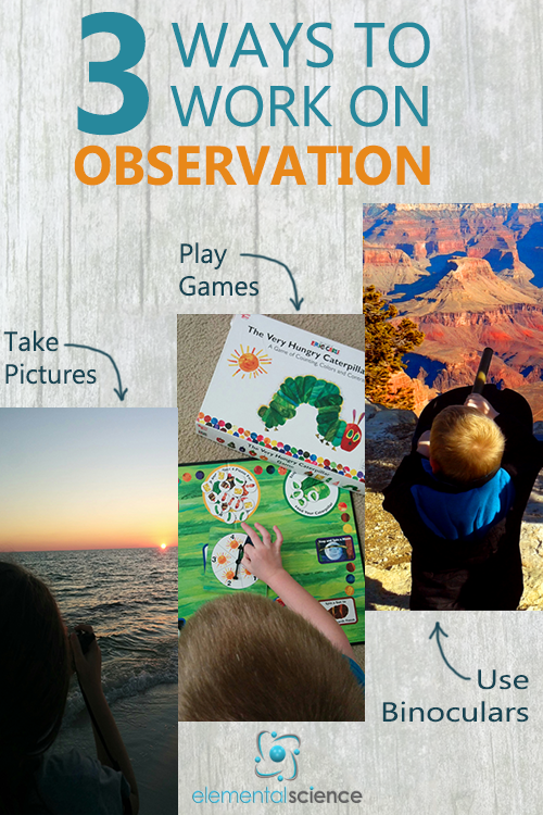 Working on the skill of observation is important for science education! Here are three ways you can provide opportunities for your students to learn to observe.