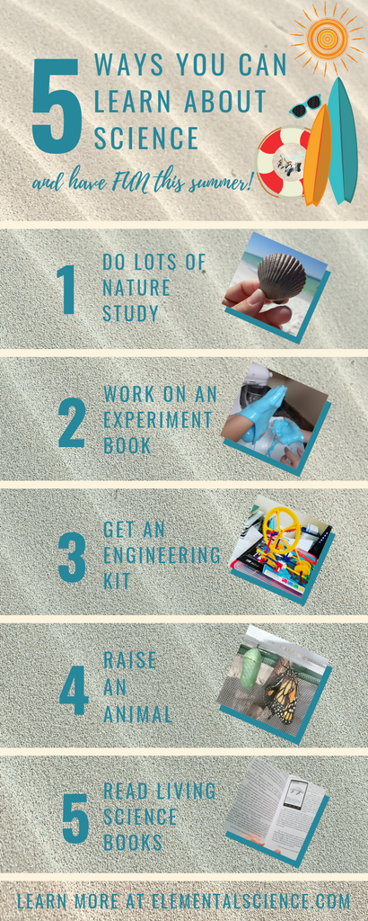 5 Ways you can learn about science and have fun during the summer