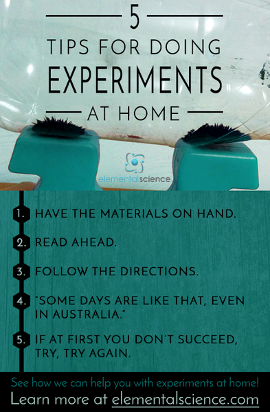 Do you struggle with doing experiments at home? These 5 tips will help!