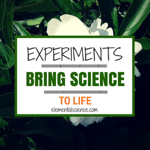 "Pinspiration-> ""Experiments bring science to life!"""