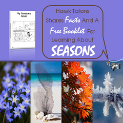 Hawk Talons Shares Facts And A Free Booklet For Learning About Seasons