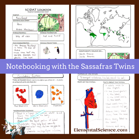 Notebooking with the Sassafras Twins
