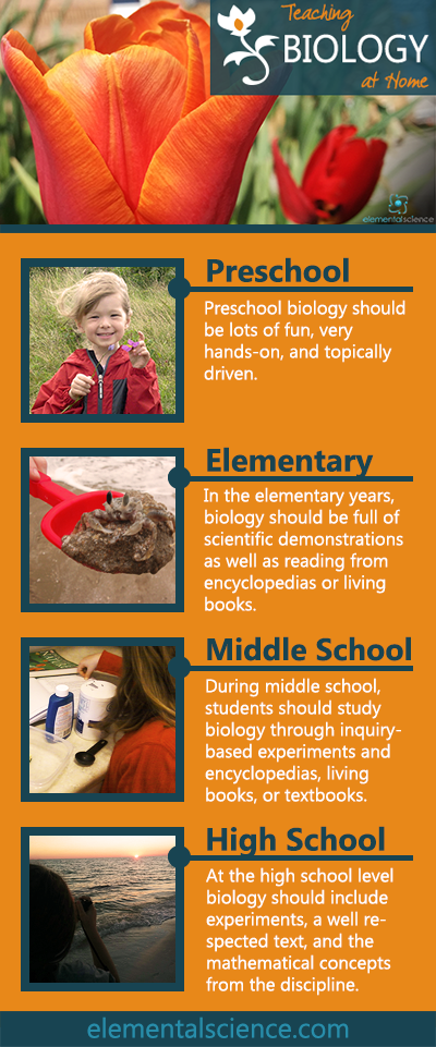 Wondering how to teach biology at home? These tips and ideas will help you create or choose a homeschool science curriculum for biology.