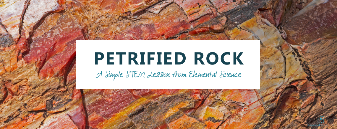 Learn about petrified rock and make your own petrified sponge in this simple STEM lesson from Elemental Science.