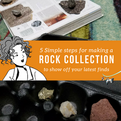 5 Simple steps for making a rock collection to show off your latest finds