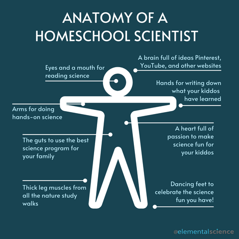 Are you a homeschool scientist? Take the quiz to find out your degree of homeschool-scientistness.