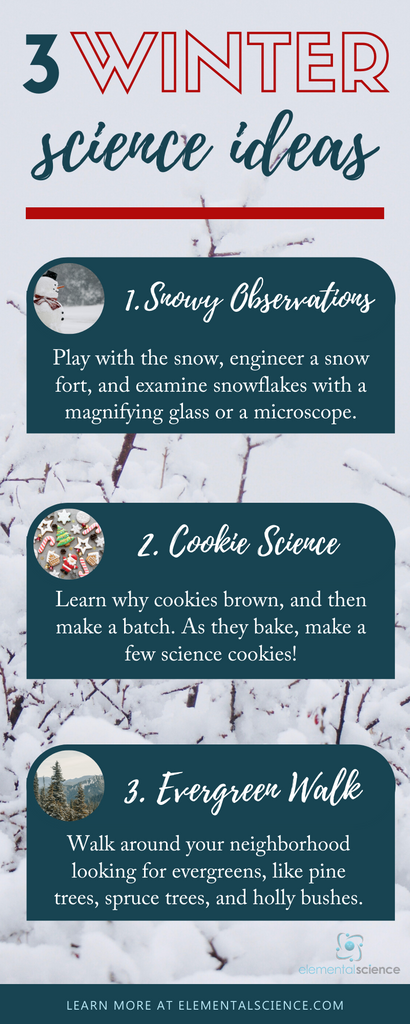 Learn some science this winter as you play with snow, back cookies, and take a walk to look for evergreens.