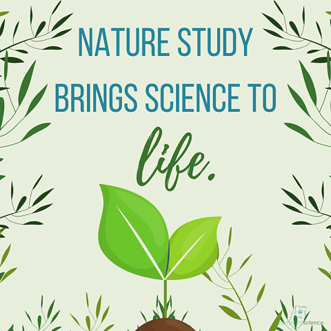 The sufficiency of nature study and a few tips - Nature Study Session, part 3