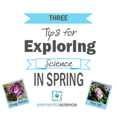 3 Tips for exploring science during spring