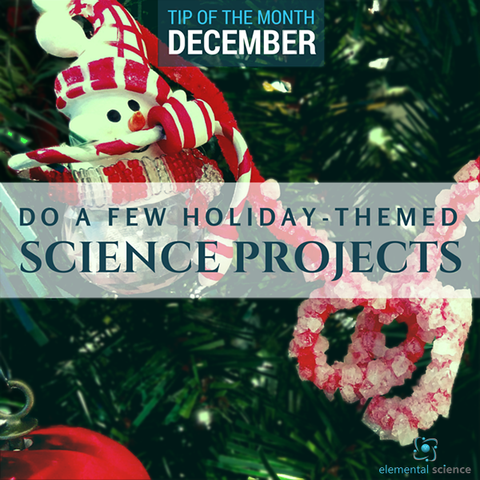 Learn how you can sprinkle a bit of holiday cheer into your homeschool science plans!