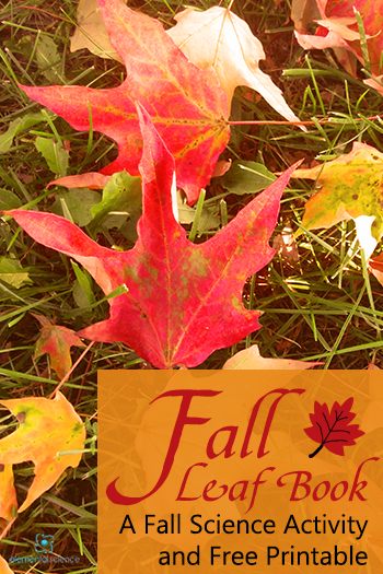 Download free printables to make your own fall leaf book - perfect fall science activity!