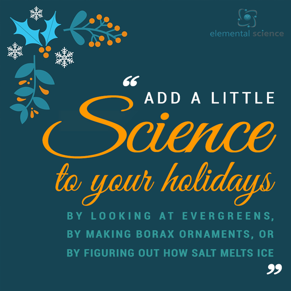 A bit of homeschool science pinspiration for the holidays!