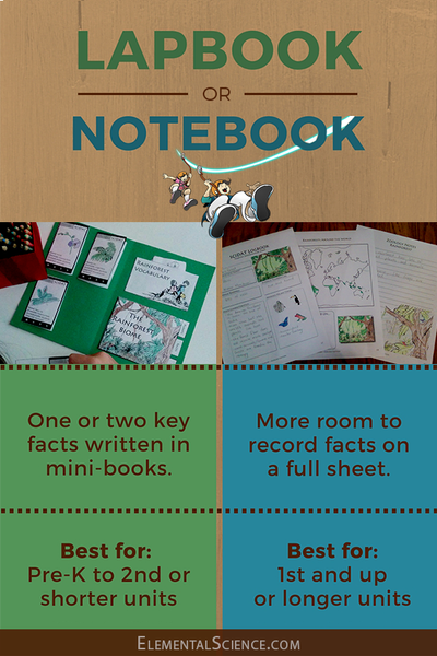 lapbook vs notebook
