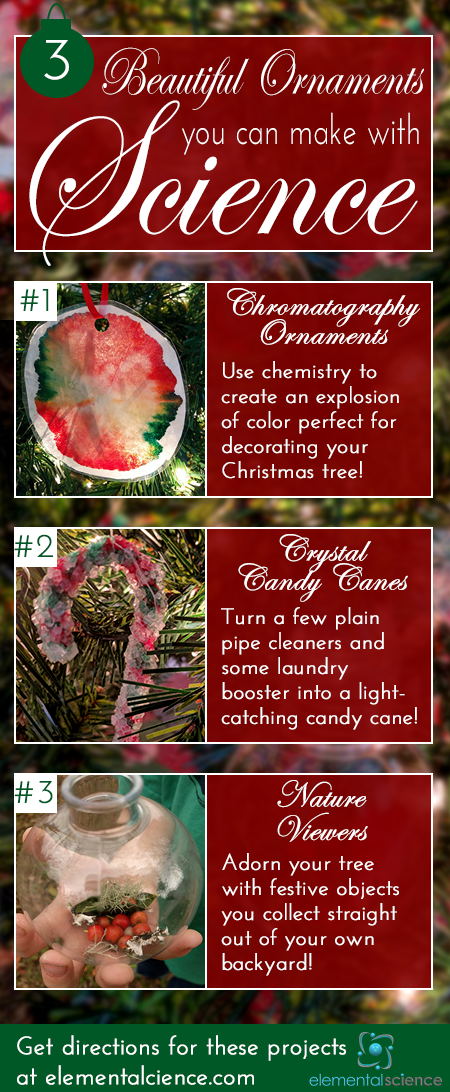 This year decorate your Christmas tree with science! Come see the directions for making chromatography balls, crystal candy canes, and nature viewers.