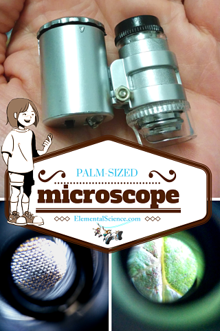 Palm-sized Microscope Review