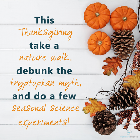 3 Thanksgiving science ideas from Elemental Science, plus links to even more