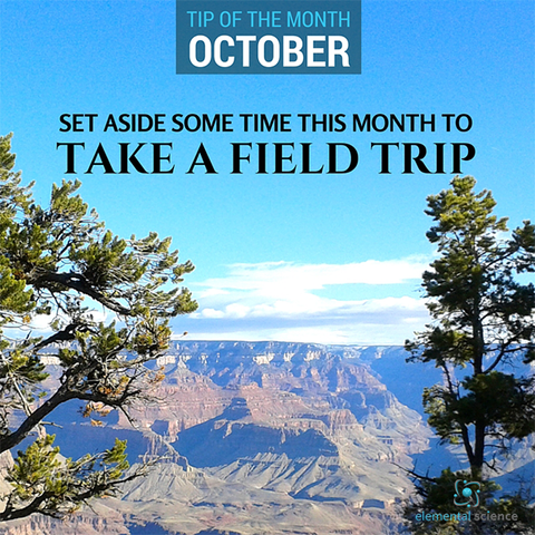 Set aside some time this month to take a field trip for homeschool science.
