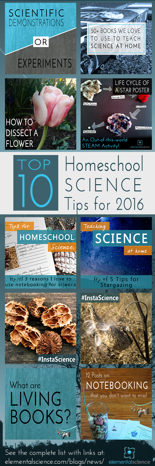 Don't miss these ten posts packed with helpful, encouraging, and practical tips for homeschool science