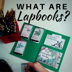 What are lapbooks?
