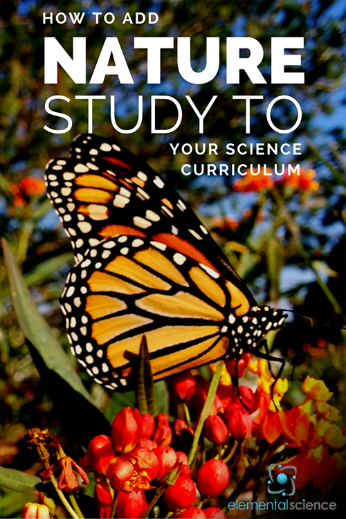 Wondering where nature study can fit into your current plan for homeschool science? This article will help you figure it out!