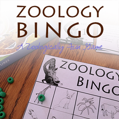 Want to enjoy learning about animals? {FREE Zoology Game}
