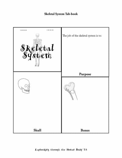 Science Lapbook - Lapbooking Through Human Body (eBook)