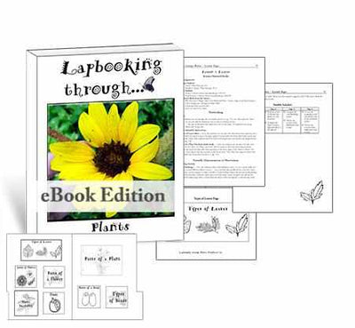 Get the templates and lessons you need to create a lapbook about plants for homeschool science.