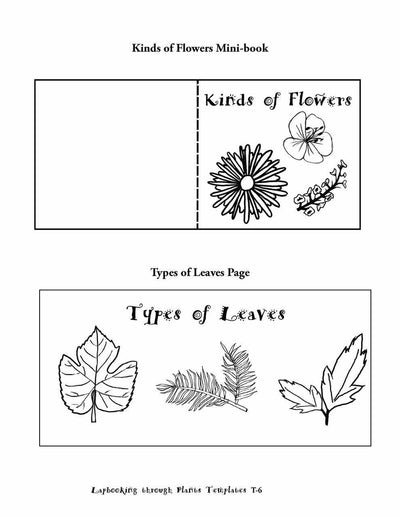Science Lapbook - Lapbooking Through Plants (eBook)