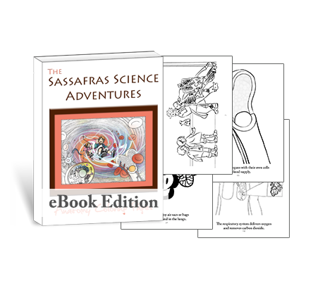 Living Books - Anatomy Coloring Pages