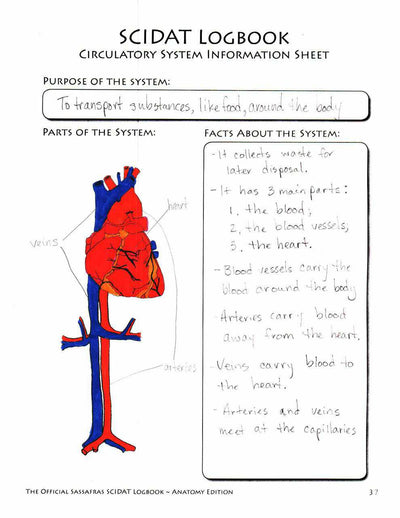 Living Books Curriculum - The Official Sassafras SCIDAT Logbook: Anatomy Edition