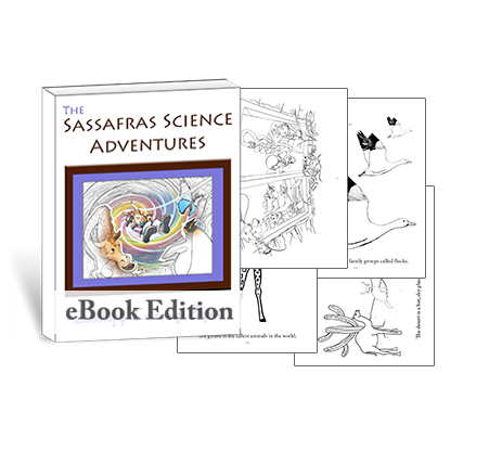 Get your STEAM going with these scientific coloring pages for zoology from Sassafras Science.