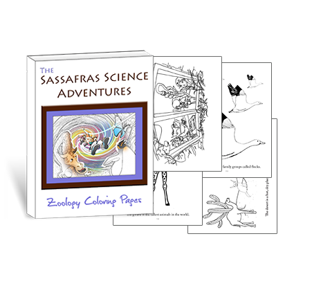 Sassafras Science Zoology Coloring Pages