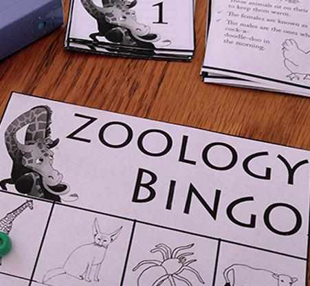 Zoology Bingo {FREE Animals Game}