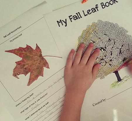 Theory - Fall Leaf Book {FREE Printable}