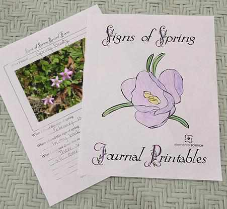 Theory - Signs Of Spring Journal {FREE Printable}