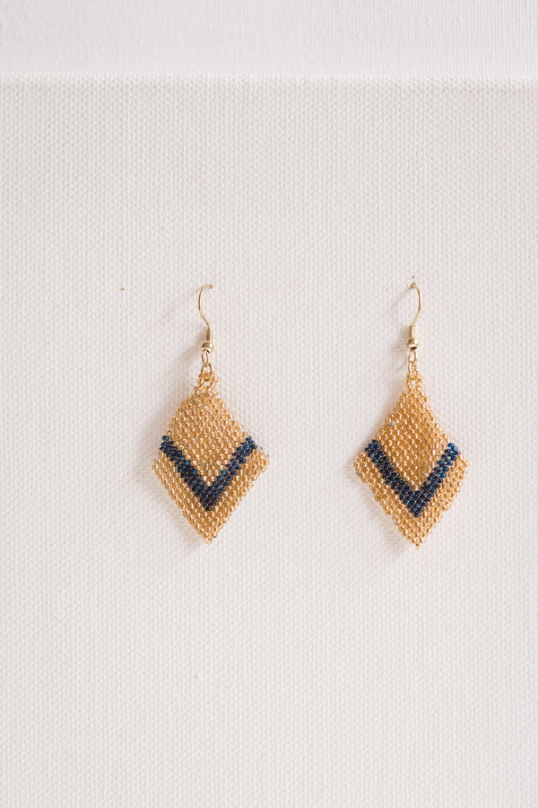 Shinny Earrings - gold