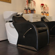 Caitlyn Shampoo Backwash Unit by Keller International
