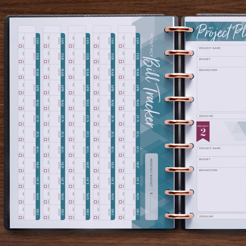 inkWELL Press Planner Colorful Monthly Overview in Gold Discs