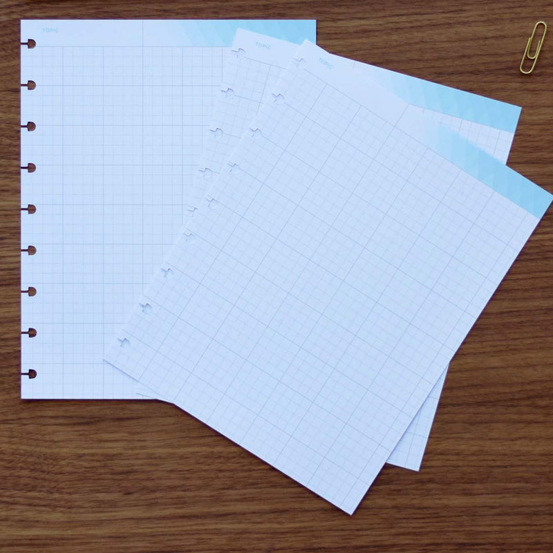 Gridded Notes for Journalling and Drawing in 360 Disc Planner