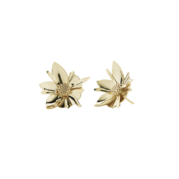 Meadowlark Wildflower Gold Studs