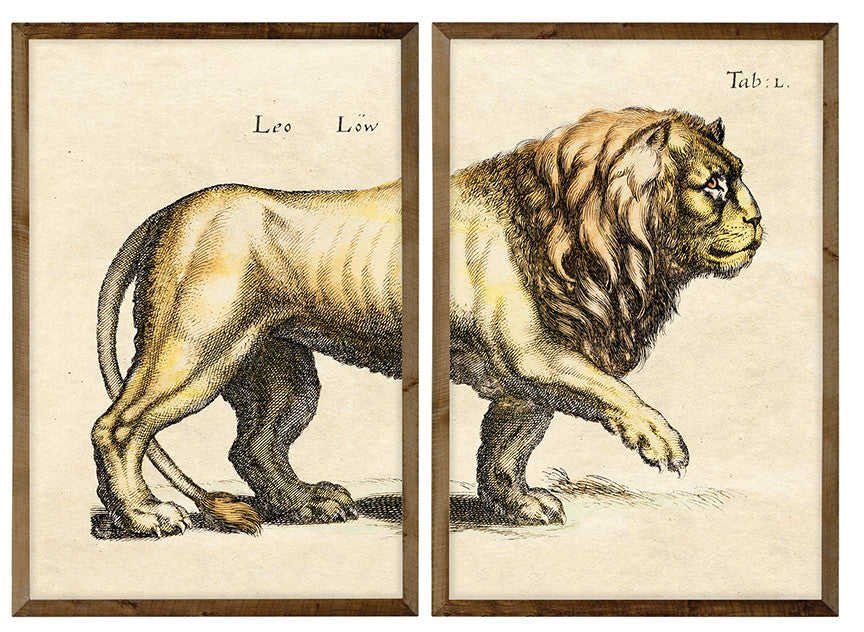 18th Century Lion (2 Pieces)